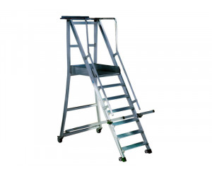 escaleras-de-apoyo-pitched-ladders